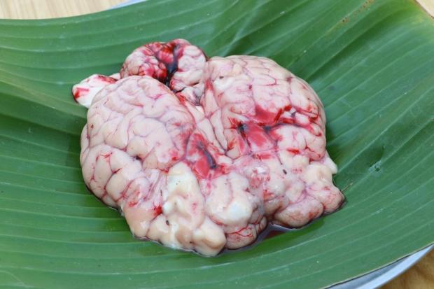 วิถีชีวิตกับการกินสมองวัว